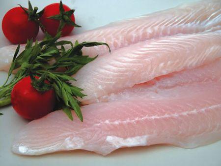 Uinversità di Udine: nuova tecnica per sventare truffe su pesci